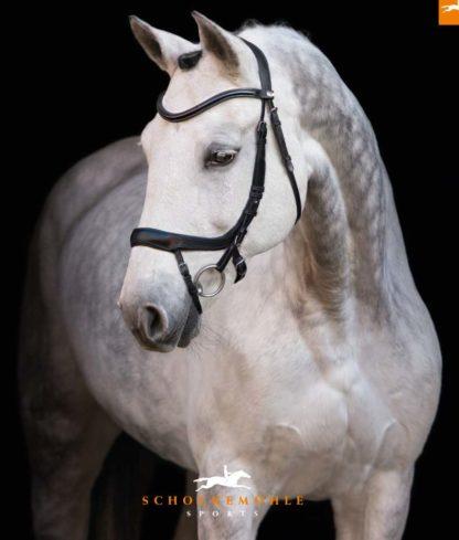 Schockemoehle Sports Anatomic Bridle Equitus Alpha - Black/Silver