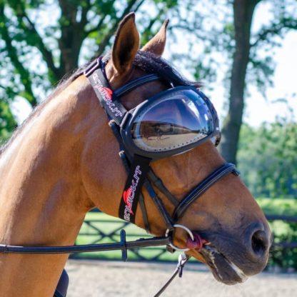 Horse Eye Wear Visor with UV Protection Lens - Transparent