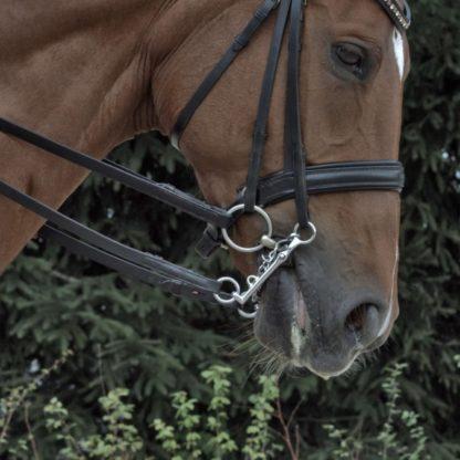 Herm Sprenger Bemelmans Weymouth Bit 16 mm - Sensogan with Curb Chain
