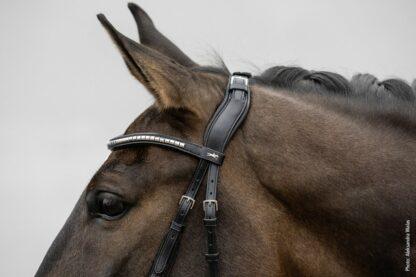 "Schockemoehle Sports Anatomic Adjustable Headpiece ""Equitus Rho"""